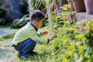 Little asian boy playing in the garden.